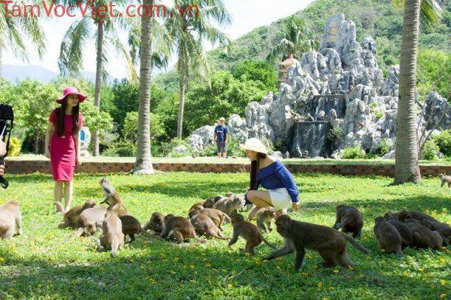 Tour Hà Nội - Đà Lạt - Nha Trang 4 Ngày 3 Đêm