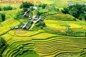 Tour Sapa – Lào Cai – Ninh Bình 4 Ngày 3 Đêm Từ Đà Nẵng