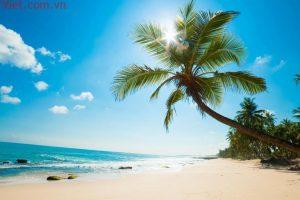 Tour Đảo Ngọc Phú Quốc 3 Ngày 2 Đêm