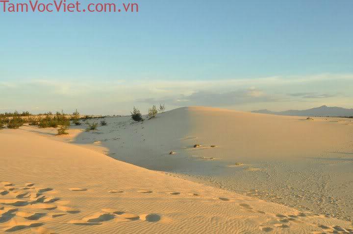 Tour Đà Nẵng - Động Thiên Đường - Suối Nước Moọc 3 Ngày 2 Đêm