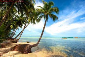 Hành trình Miền Tây – Đảo Ngọc 5 Ngày 4 Đêm